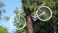 Assicurazione bici, Bici2Go è la polizza giusta per te?