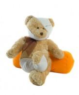 La misteriosa scomparsa dell'orso, i danni da acqua condotta nell'assicurazione sulla casa
